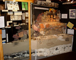 Blandford Forum Palaeontology and Archaeology